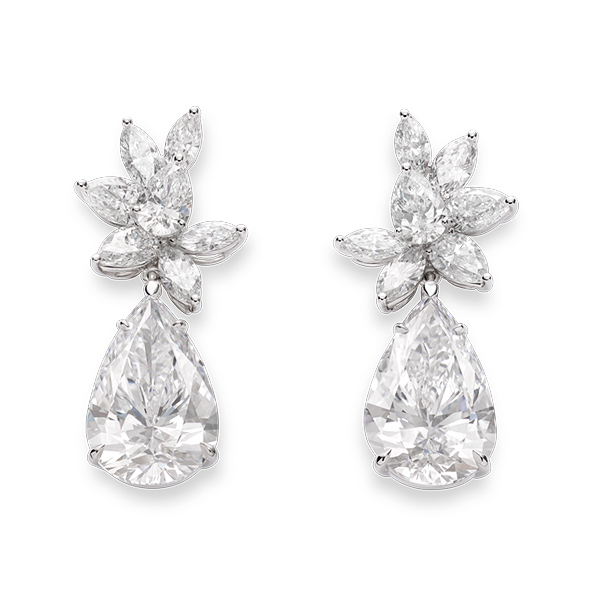 A beautiful pair of earrings enriched with diamonds