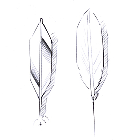 Sketch showing the similarity between the Alpine Eagle's second hand and an eagle's feather.