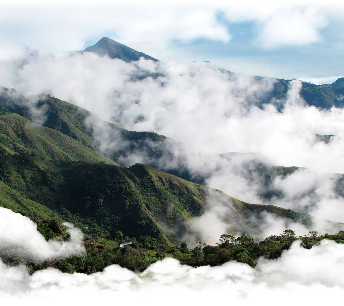 Moutains covered by grass and jungle trees, with some clouds floating in the valleys.