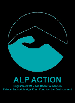Image of Alp Action poster