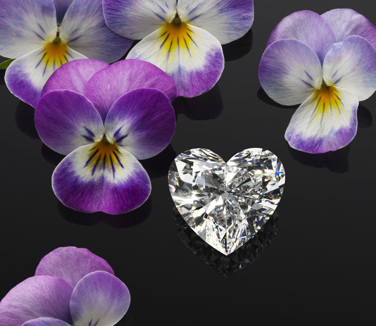 Image of heart cut diamond born of the Queen of kalahari Diamond surrounded by orchids